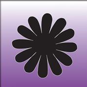fiore14