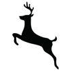 Immagine di Forme Animali in Polistirolo