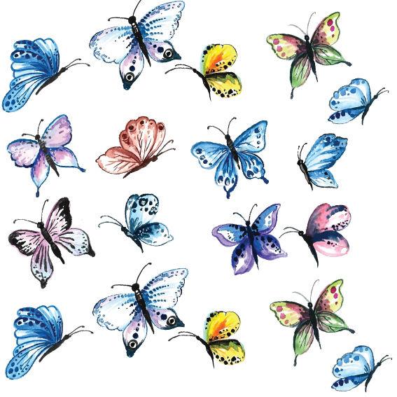 Farfalle Colorate 2