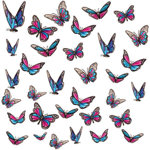 Farfalle Colorate 3