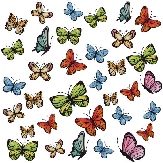 Farfalle Colorate 6