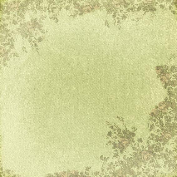 Leaf Border Background 7